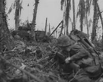 Marines_in_Peleliu
